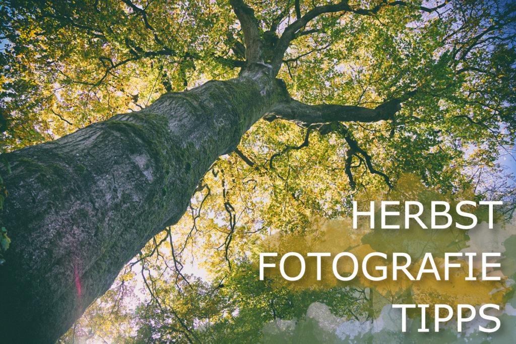 herbst fotografie tipps